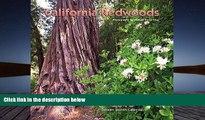 Read  California Redwoods 2013 Calendar  Ebook READ Ebook