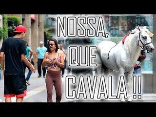 QUASE ELOGIANDO GAROTAS #05