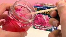 Kosmos Experimentierkasten - Wir züchten pinkfarbende Kristalle!!! | Experiment Demo Teil 3