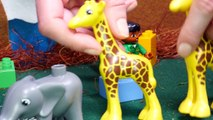 Animal toys for kids - Animals for kids - Wild animals - Animals learn to save water