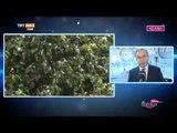 Adana Valisi Mustafa Büyük ve Gazeteci Ayşe Arman ile Röportajımız - Medya Festival - TRT Avaz