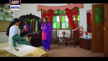 Watch Mein Mehru Hoon Episode 05 on Ary Digital in High Quality 18th July 2016
