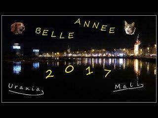 Voeux 2017