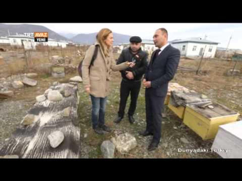 Şeki'de TİKA'nın Verdiği 10 Arı Kovanının Kasabaya Faydası - Dünyadaki Türkiye - TRT Avaz