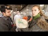 Hatay Reyhanlı'da Suriyeliler İçin Ekmeğin Üretildiği Mobil Fırın - Dünyadaki Türkiye - TRT Avaz