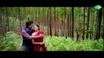 Maaveeran Kittu Kannadikkala HD Video Song   D.Imman   Vishnu Vishal   Sri Divya
