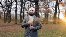 New Naat - Hafiz Ahmed Raza Qadri - Sarkar Aaye - New Naats 2017