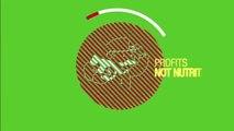 Non GMO 10 Day Cleanse Enzymatic Purium
