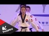 Taekwondowon opening ceremony