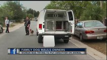 """Pit Bull Mix Named """"Scarface"""" Mauls Owners After They Tried To Put A Sweater On Him!"""
