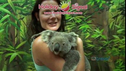 Gold Coast holiday travel video guide, Queensland Australia   www.holidaysignal.com