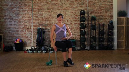 Seated Abs Workout  Chair Exercises for Your Core