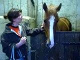 Ma Première rencontre avec Ourasy mon nouveau cheval