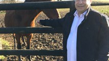 Michel Fitoussi, éleveur de chevaux