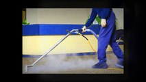 Deep Carpet Cleaning in Pearland, TX - Benefits Of Hiring A Carpet Cleaning Professional