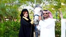 Lions, jaguars, girafes... A Dubaï, un milliardaire s'offre un zoo privé avec animaux sauvages