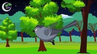 Chiriya Rani _ چڑیا رانی _ Urdu Nursery Rhyme-YZ-e_dU51sg