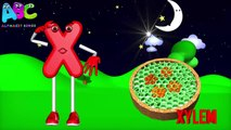 Letter X Song _ Phonic ABC Song _ ABC rhymes for children in 3D _ X for Xylophone-dLFp-SR_G48