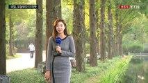 [날씨] 도심 가을빛 완연...내일 오늘보다 더 따뜻 / YTN (Yes! Top News)