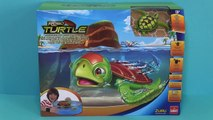 Robo Turtle Playset by Zuru Tortue robot
