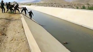 پیرو، آوارہ کتے کو پولیس نے نہر میں ڈوبنے سے بچالیا-xfTNlaNFHa8