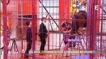 """Un lion enfermé dans une cage dans l'émission de France 2 """"Actuality"""""""