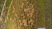 Avignon / Des drones bientot au service des...