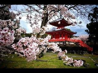Japanese Instrumental Music Traditional | Relaxing Japanese Music - Japan Anime Music