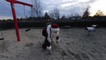 Nikon: what happens if Santa is really really fit (360°)