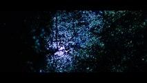 À Ceux qui nous ont offensés - Bande-annonce / Trailer (Michael Fassbender, Brendan Gleeson) [HD, 1280x720p]