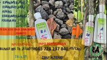 HP 085 728 237 840 Obat Jerawat Batu Alami Yang Dijual Di Apotik