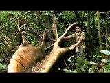 "Teaser for ""Oras Na!"" GMA-7's new environmental docu hosted by Richard Gutierrez"