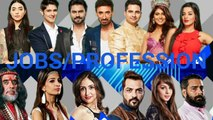Big Boss 10 Contestants Jobs and Profession-13th January 2017 updates by Best Video