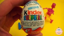 Kinder Surprise Egg Learn A Word! Lesson W Teaching Spelling & Letters Unwrapping Eggs & Toys