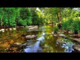 Relaxing Piano Music - Soothing, Meditation, Celtic Music - Beautiful Music, Instrumental Music