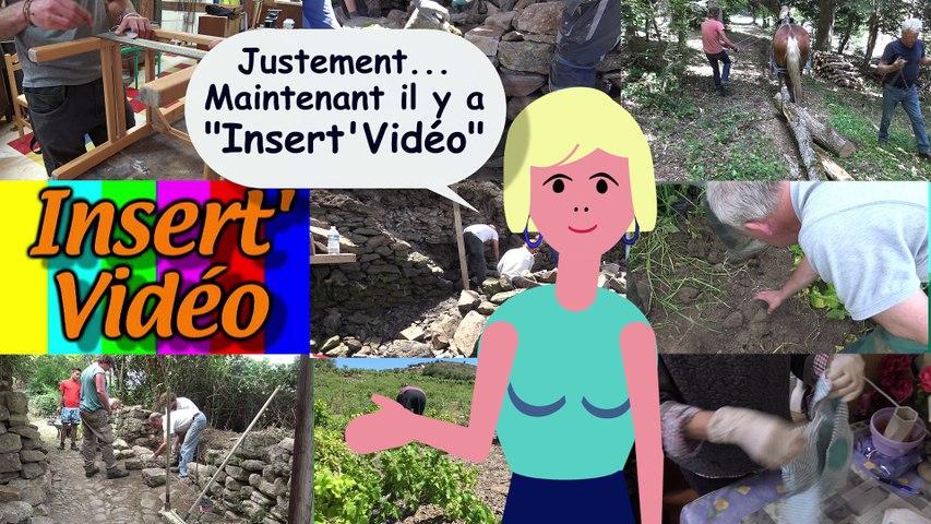 Présentation d'INSERT VIDEO aux chantiers d'insertion