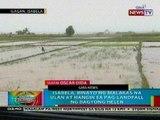 BP: Isabela, binayo ng malakas na ulan at hangin sa pag-landfall ng bagyong Helen