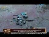 24 Oras: 9-anyos na lalaki sa Ramon, Isabela, patay matapos masabugan ng bomba sa likod-bahay nila