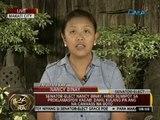 Senator-Elect Nancy Binay, iginiit na hindi dapat muna nagproklama ng mga senador ang Comelec