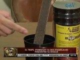 24 Oras:  OL Traps, ipamimigay sa mga eskwelahan pangontra sa Dengue