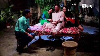 Ek Pal Ka Malal - Last Episode 54
