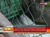 BT: Bustos Dam sa Bulacan, nagpapakawala pa rin ng tubig