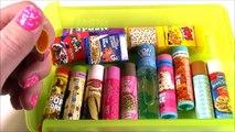 My Lip Gloss COLLECTION Part 1! LIP GLOSS LIP BALM CHAPSTICK HAUL! BubblePop Kids FUN