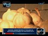 Saksi: Midnight Snack: Garlic gourd, tinapay na pinalamanan ng bawang