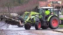Vidéo. Poitiers. Abattage au petit matin de 62 arbres aux Trois-Cités