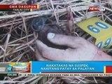 BP: 2 umano'y magnanakaw, patay sa shootout sa Tarlac City