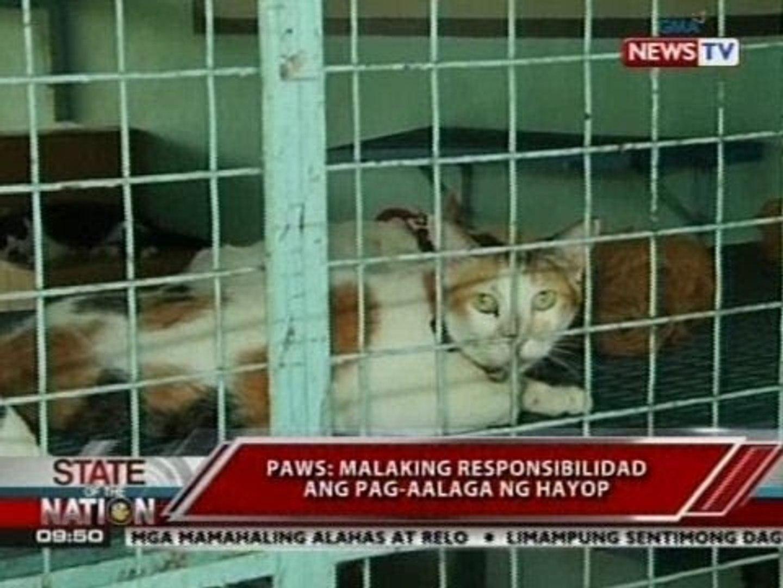 Pet day care at pet hotel, pwedeng pag-iwanan ng mga alagang hayop