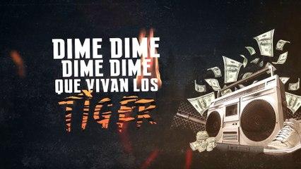 Sensato ft Tali & Lito Kirino - Que Vivan Los Tiger (Video Lyrics)