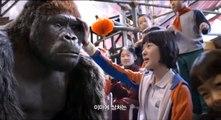 Mr. Go Trailer