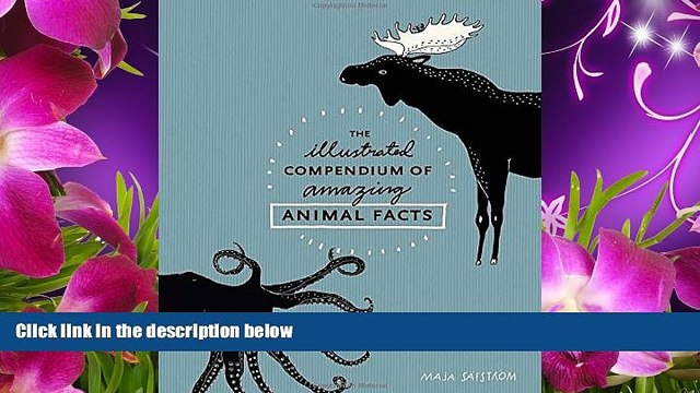 READ book The Illustrated Compendium of Amazing Animal Facts Maja Säfström Full Book